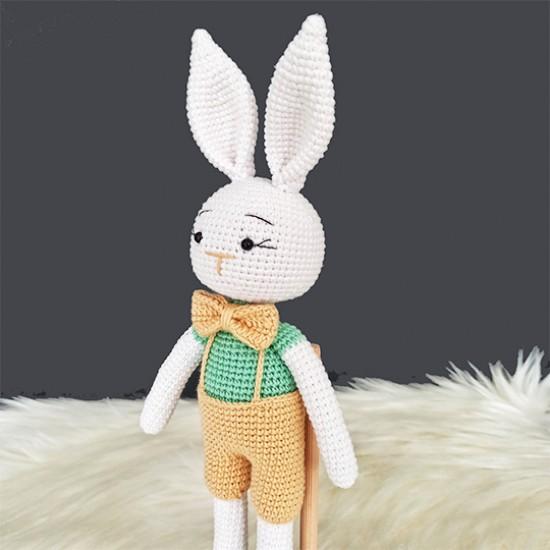 Elbiseli Sevimli Tavşan