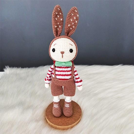 Elbiseli Tavşan